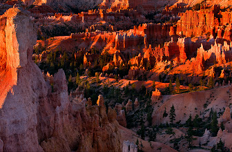 Photo: Well it looks like the Summer has finally made it to London. So I thought I would process this old happy image from Bryce Canyon. This place is stunning but not easy to photograph. It looks like there's a great photo behind every corner but one must try pretty hard and focus on details rather than huge panoramas (I think). Enjoy.  #hqsppromotion #PlusPhotoExtract #potd #BreakfastClub #breakfastartclub #photography #DawnOnSunday