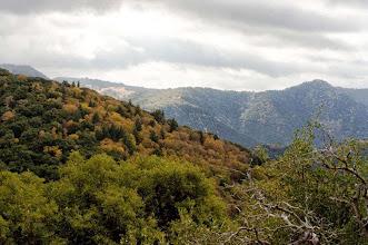 Photo: Fall Colors - S. Pipkin