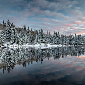 Silver Lake Sunrise  by Brandon Montrone - Landscapes Sunsets & Sunrises ( sunrise, pine tree, forest, reflection, nature, snow, pine trees, winter, scenic, lake, landscape )