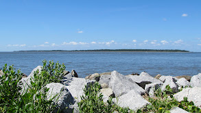 A Family Moves From Busy Alpharetta, Ga., to Relaxing St. Simons Island thumbnail