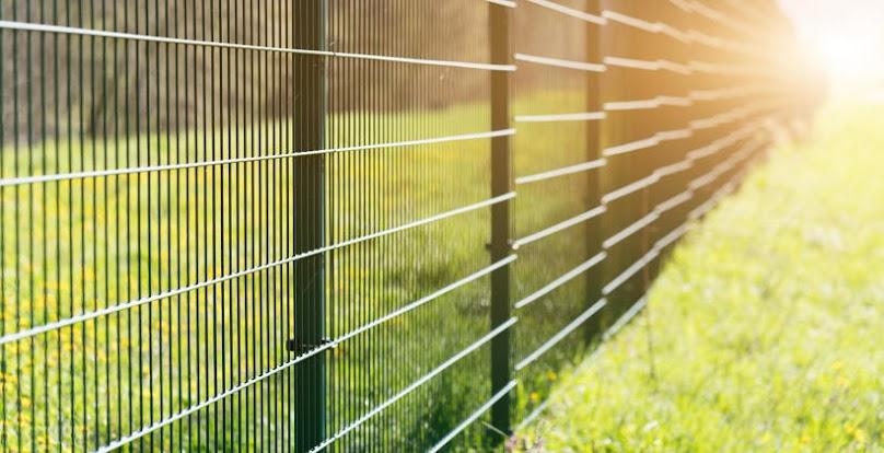 Poznaj zalety i wady ogrodzenia panelowego