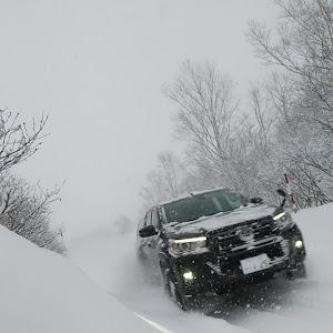 ハイラックス GUN125 Z.Black rally editionのカスタム事例画像 なんさんの2019年12月09日19:03の投稿