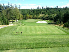Photo: This Salish Cliffs hole is more downhill than it looks here. Pretty!  My tee shot ended up on one of the slender grass  fingers of the bunkers on the right. It led to a bogey 4 on the Par 3 hole.