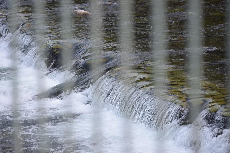 La Forza dell'Acqua  di marinonelorenzo
