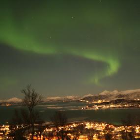 Aurora turn by Sigbjørn Berg - Landscapes Starscapes ( stokmarknes, winter, northern lights, aurora borealis, vesterålen, nordland, northern norway )