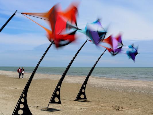 i colori del vento di PaolaPlinia