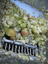 Photo: appels persen