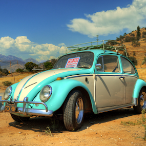 Far From Home by Darin Williams - Transportation Automobiles ( clouds, car, hills, desert, grass, automobile, california, german, sequoia national park, beetle, volkswagen, three rivers, scrub, sky )