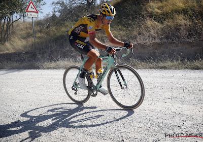 """Wout van Aert lijkt niet voor eigen succes te mogen gaan in de Tour de France: """"Hij is in de Tour een 100 procent knecht"""""""