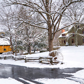 winter at the farm  by Adina White - Landscapes Travel ( farm, winter, cold, driveway, snow, house )