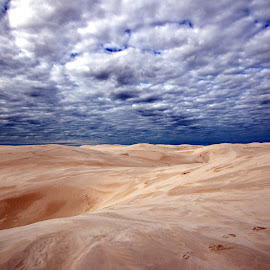 Sand dunes, Nambung National Park by Prashant Karnath - Landscapes Deserts