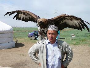 Photo: Kazak aranysas, az Altáj egének ura