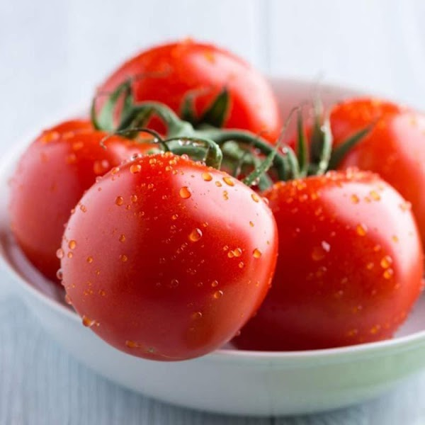 LET'S TALK TOMATOES