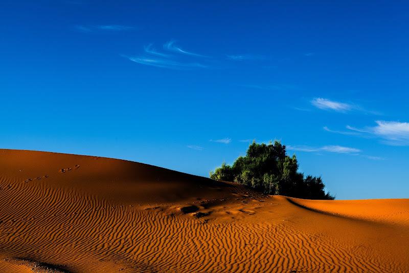 Vita sulla sabbia di tolmino