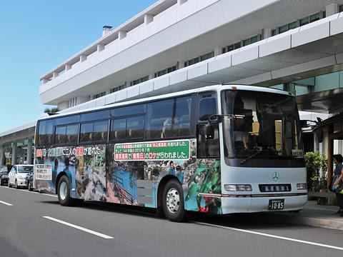 鹿児島交通「鹿児島空港~加世田・枕崎線」 1085