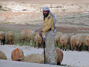 Photo: Shepherd encountered on the drive to the Dead Sea.