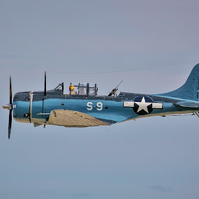 Douglas SBD-5 Dauntless by Rodney Rodriguez - Transportation Airplanes ( flight, plane, blue, airplane,  )