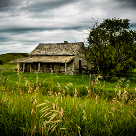 Peering Into The Past by Sylvia Meier - Landscapes Prairies, Meadows & Fields ( history, feild, meadow, beauty, forgotten, decay, abandoned )