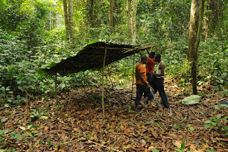 Photo: building a shelter