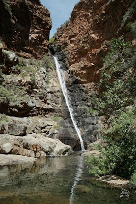 Wasserfall in der Meiringspoort