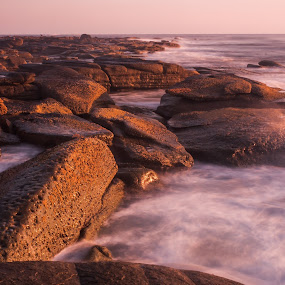 Morning by Daniel Wheeler - Landscapes Waterscapes ( sunshine coast, rocks, qld, oncean, long exposure )