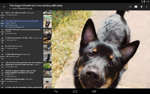 App reddit is fun (unofficial) APK for Windows Phone