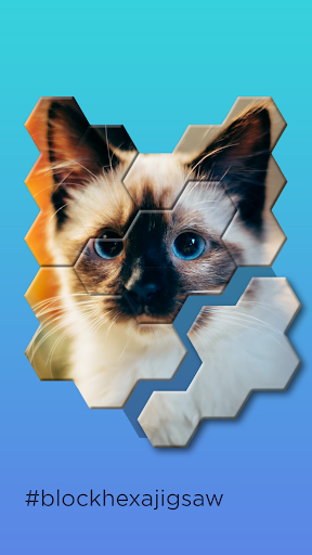 Block Hexa Jigsaw Puzzle apklade screenshots 1