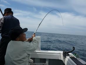 Photo: またキター! クマガイさん!「せ、船長ー、代わってー!!」 ・・・自分で釣りましょうー!