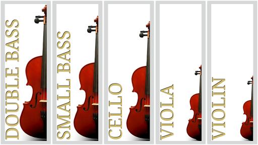 Maple Violin 3.0.1 screenshots 3