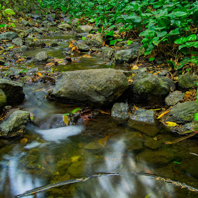 Reflection on the little river.  by Mehdi Laraqui - Nature Up Close Water ( water, reflection, nature, green, plants, reflections, forest, leaves, motion, rocks )