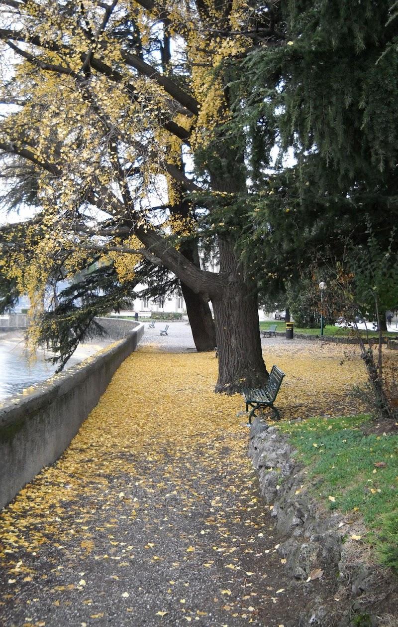 Quel ramo del lago di Como di valeriasantelli