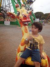 Photo: Fauna na Nicolândia