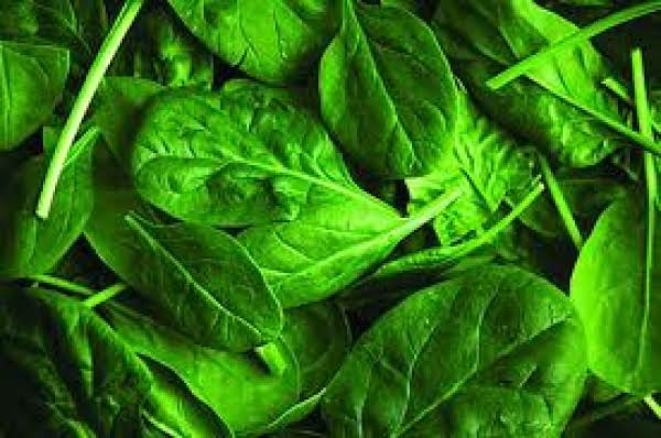 Pam's Spinach Salad Sammich Recipe