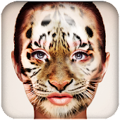 Wild Animal Photo Face Morph