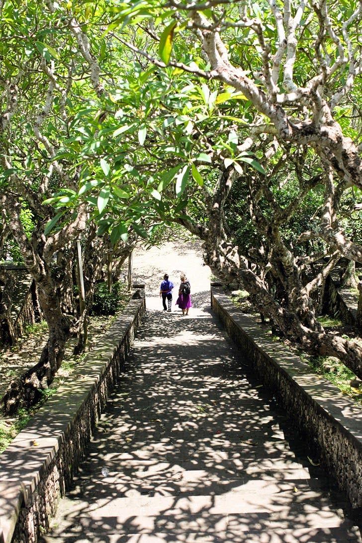 Uluwatu Bali Monkey Temple.