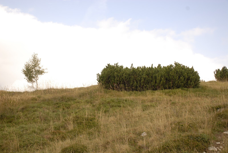 Aria d'autunno di Gian78K