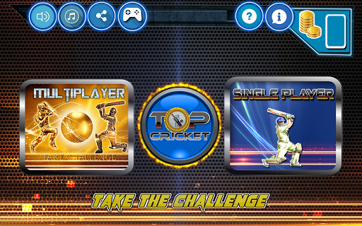 Top Cricket MultiPlayer screenshot 1