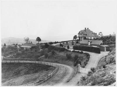 A photograph of High Peak,Neika, Tasmania, taken in 1898