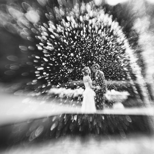 Свадебный фотограф Вера Смирнова (VeraSmirnova). Фотография от 14.01.2015