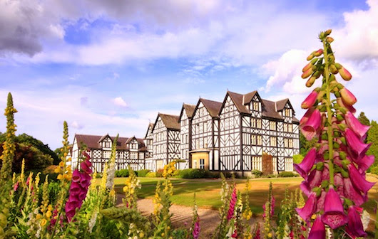 Family orienteering event to be held at Gregynog Hall