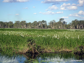 Photo: Kakadu National Park
