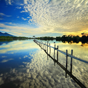 Blouse of Goose by Andrew Supit - Landscapes Waterscapes