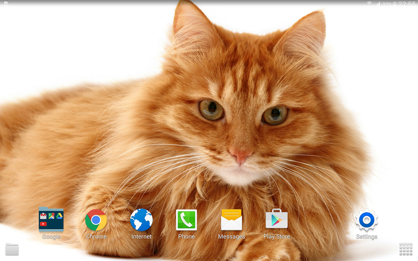 Kucing Wallpaper 4k Apl Android Di Google Play