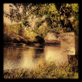 Keep Your River Clean by Bob Williams - Nature Up Close Water ( illinois, kankakee river, state park, river )