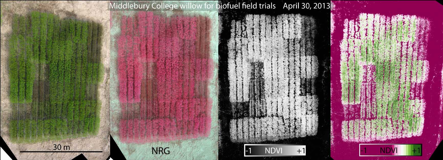 Photo: Normal color photo (left), false color infrared image (NRG), and grayscale and colorized normalized difference vegetation index (NDVI) images. Aerial images were taken by a pair of synchronized cameras lofted by a kite and each is stitched from 12-15 images . NRG and NDVI images were derived from two photos, one taken by a normal camera and one taken by a camera modified to record only infrared light. Healthy plants typically have NDVI values between 0.1 and 0.9. Note that brown vegetation has very low NDVI values because it is not photosynthetic.