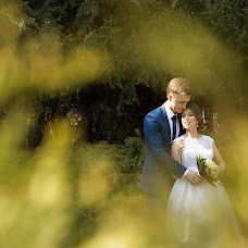 Wedding photographer Kristina Kalinina (KalininaKristina). Photo of 08.05.2016