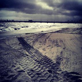Tracks by Jessica Mercado - Landscapes Beaches ( tracks )