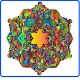 Mandala Coloring Book: Adult Stress Free Game for PC-Windows 7,8,10 and Mac 1.0