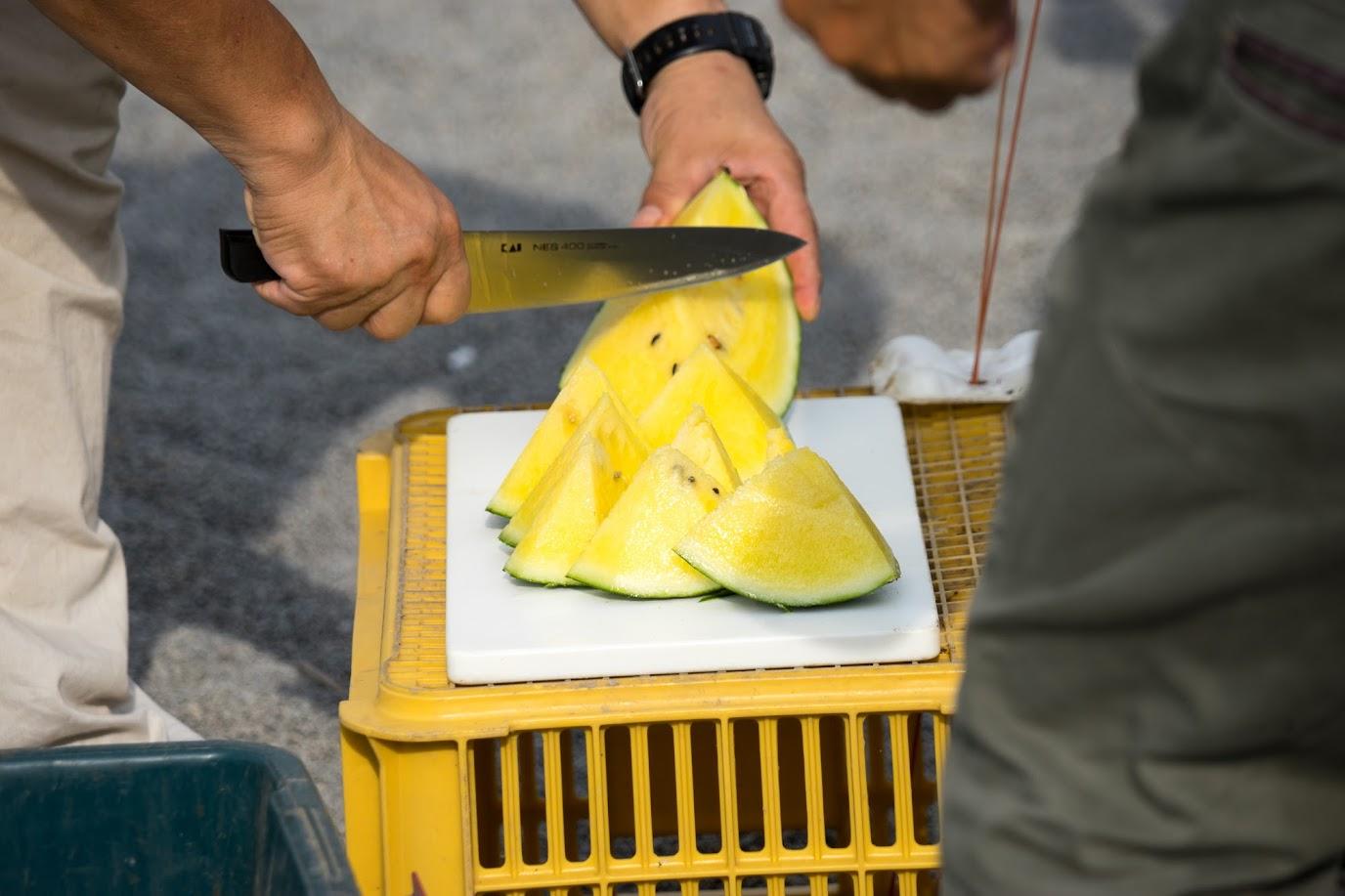 真っ黄色に熟したひまわりスイカ