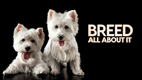 Breed All About It thumbnail